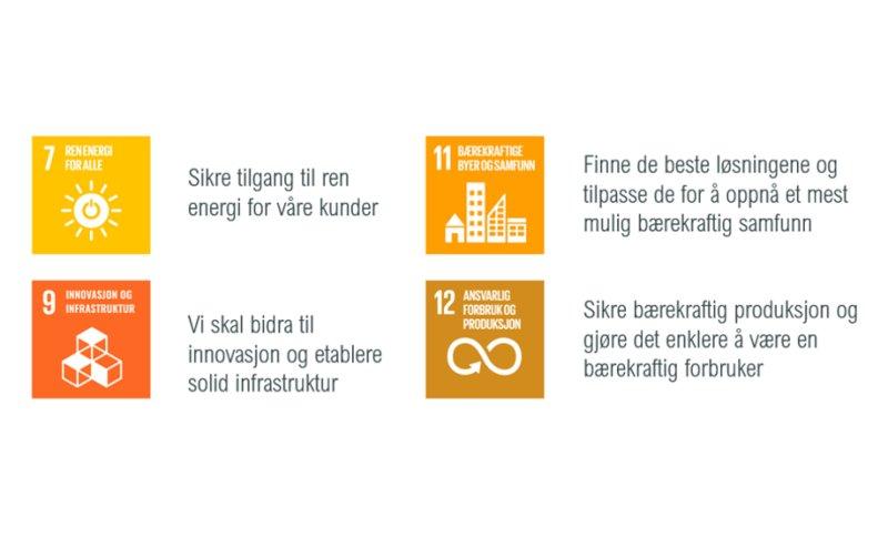 NEAS sitt hovedfokus på bærekraft vil naturlig være innenfor energi og teknologi. Samtidig vil de alltid være oppmerksom på mål nr 17, 13 og 5, som handler om samarbeid, stoppe klimaendringer og fokus på likestilling.